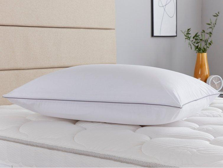 Sealy pillow