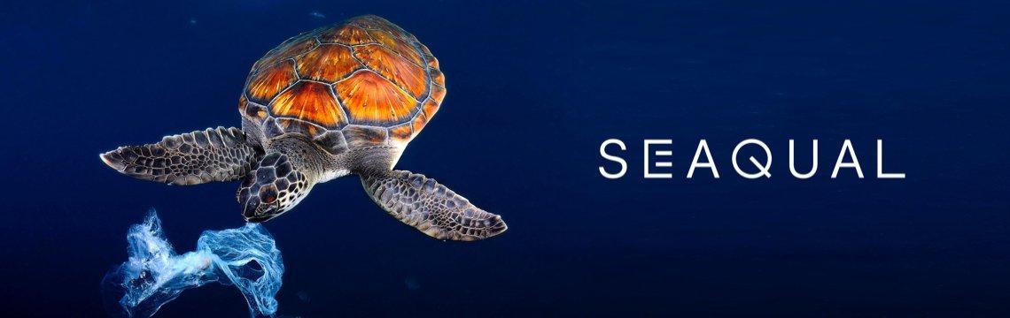 Seaqual Turtle